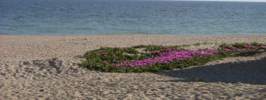 Playas de la Antilla
