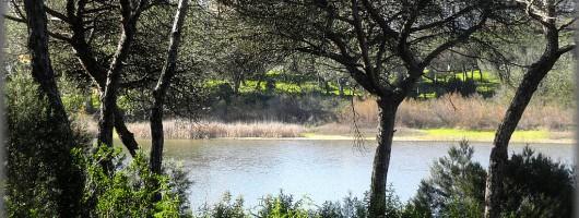 Laguna del Portil-Huelva